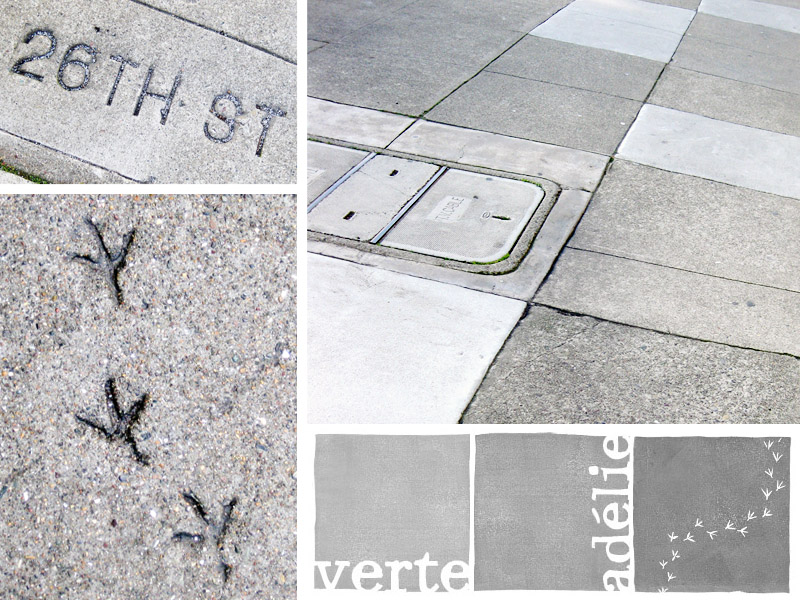 San Francisco sidewalks and animal tracks, or the story of a header